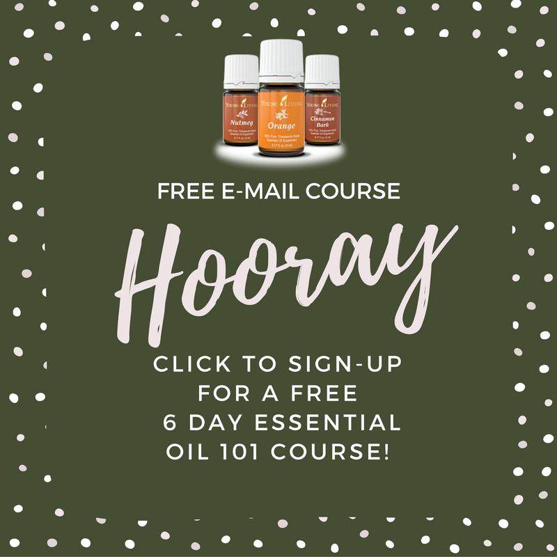 free-e-mail-course