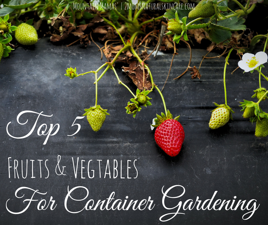 Top 5 Fruits and Vegetables for container gardening! | Mountain Mamas' | http://2momsnaturalskincare.com