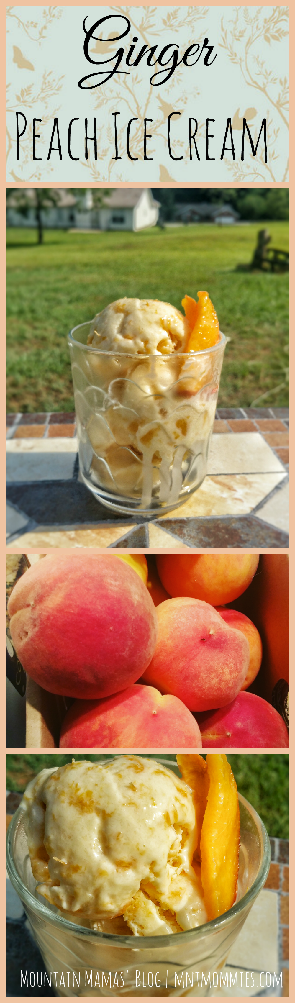 Summer Ginger Peach Ice Cream Recipe | Mountain Mamas' Blog | mntmommies.com