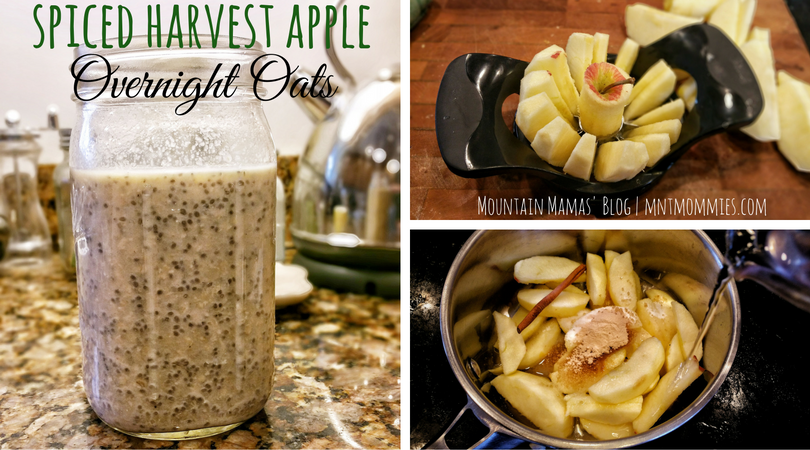 Spiced Harvest Apple Overnight Oats Breakfast Recipe | Mountain Mamas' Blog | mntmommies.com