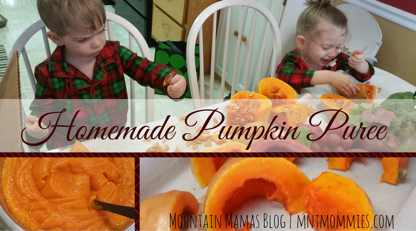 Homemade Pumpkin Puree Recipe Great for Thanksgiving, Christmas, and all Holiday Baking! | mntmommies.com