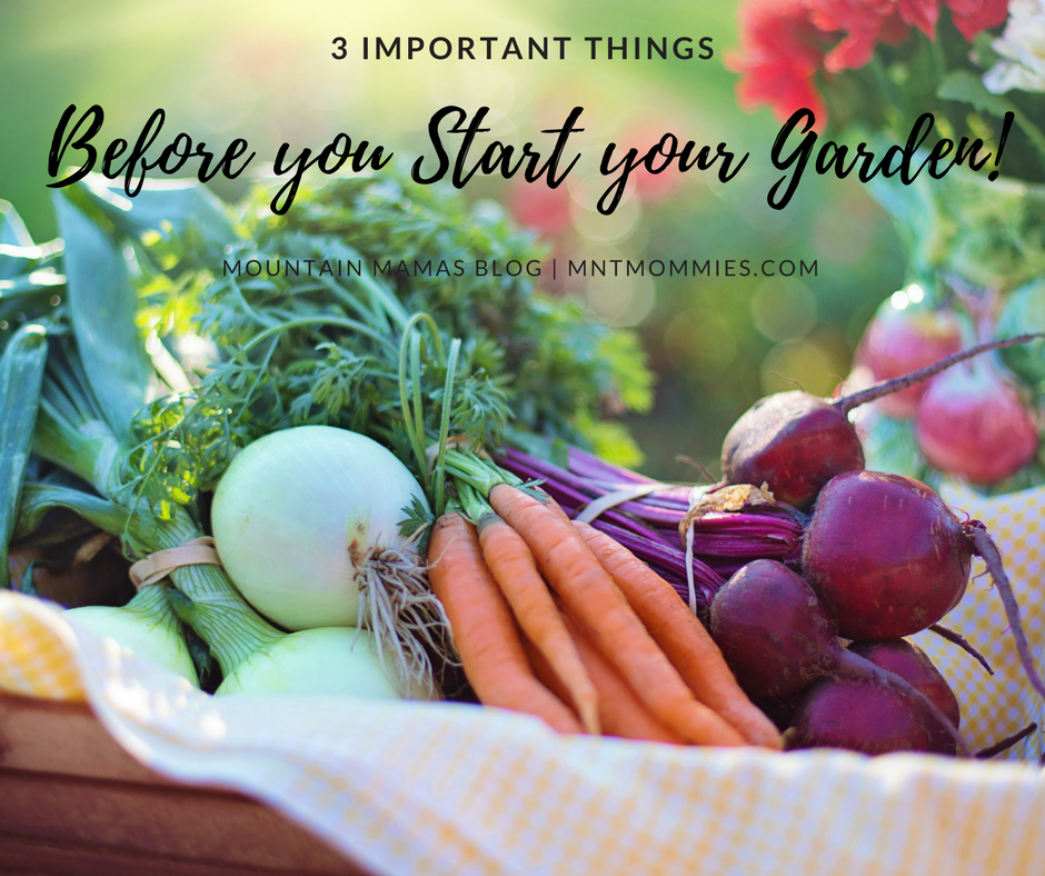 3 Important things before you start your garden | Mountain Mamas'' | mntmommies.com