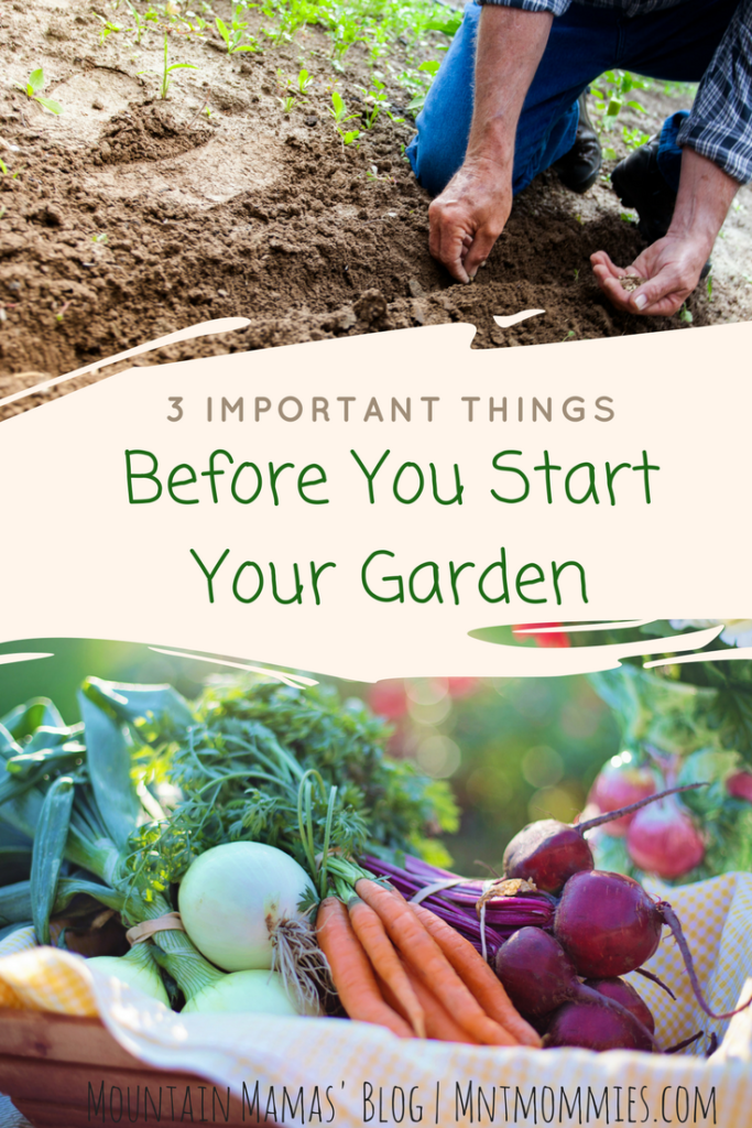 3 Important things before you start your garden | Mountain Mamas'' | mntmommies.com } #homestead #sustainable # vegetable #fruit