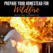 Prepare Your Homestead for Wildfire | Mountain Mamas' | mntmommies.com